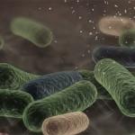 Innovative Solution For Biofilm Detection