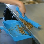 Are Your Cleaning Tools Food Safe?